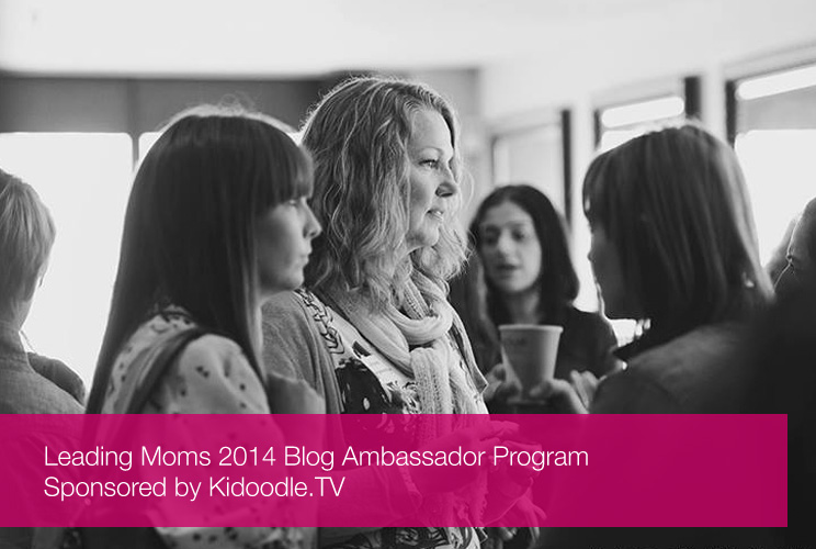 Blog Ambassador Program