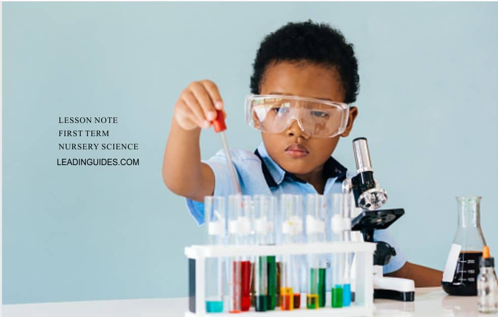 Lesson Note Nursery 1 First Term Science Week 1