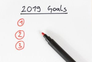 Goals 2019