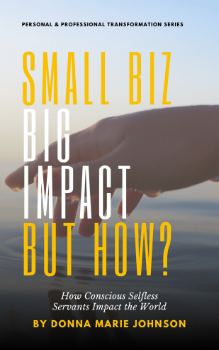 """book cover """"Small Biz Big Impact But How?: How Conscious Selfless Servants Impact the World"""""""