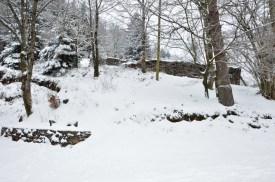 winter-in-the-vosges-2