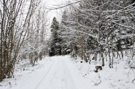 winter-in-the-vosges-3