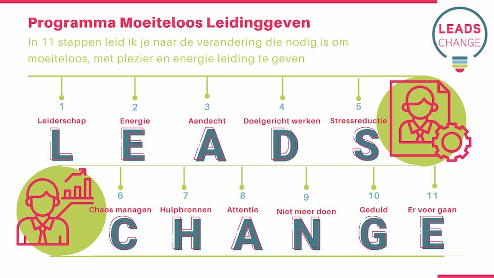 Infographic over het Programma Moeiteloos Leidinggeven met een grafisch overzicht van de 11 stappen die je leiden naar de verandering die nodig is om moeiteloos leiding te geven