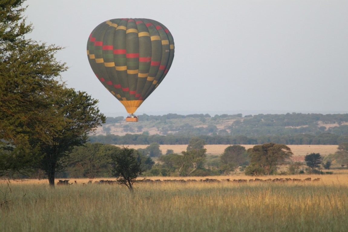 Kenya Safari - Unique safari opportunities