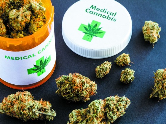How Cannabis Can Benefit the Pharmaceutical World