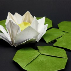 Diagram Of Perfect Flower Lily Chinese 4 Wheeler Wiring Gallery Leaf Piece Origami