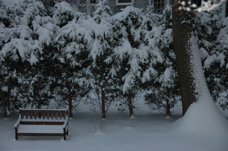 Snow out window, December 14