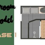 Bathroom Demo | Phase 1