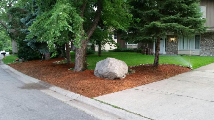 mulch landscaping trees front yard house