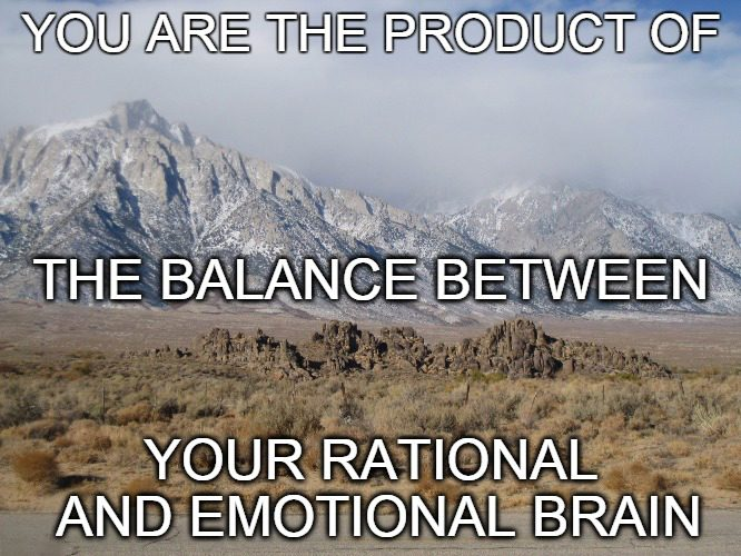 LeahBensonTherapy.com Blog Post You are the product of your emotional balance