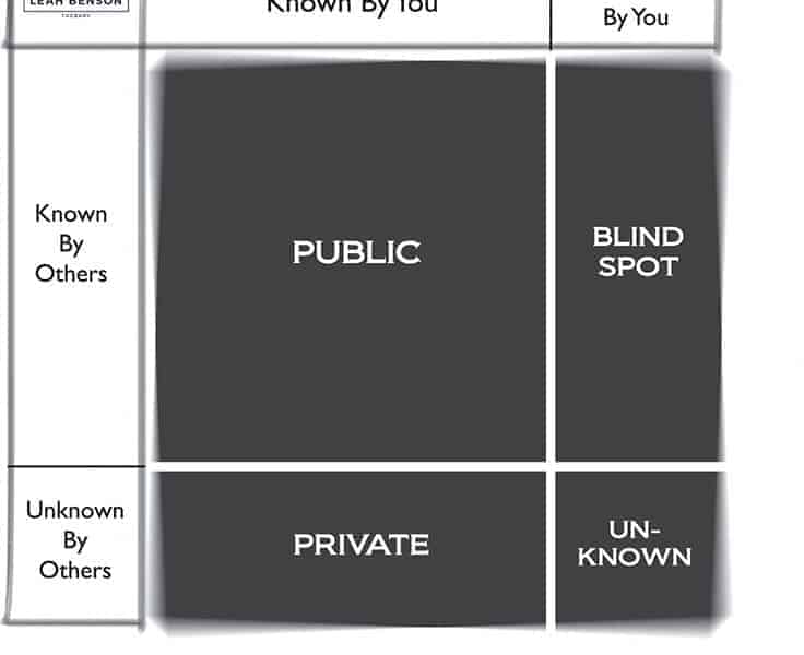 Johari window model