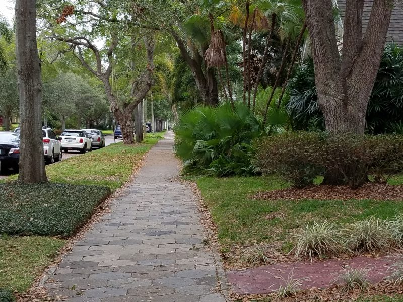 Street in the old northeast of St Petersburg, FL
