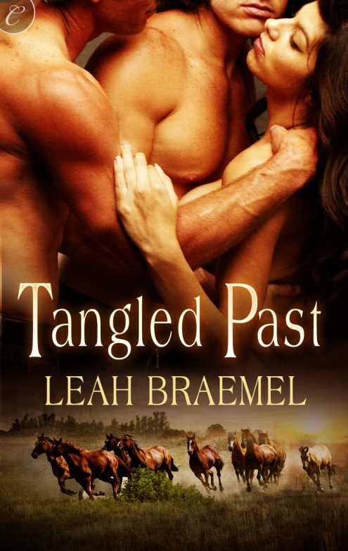 Tangled Past Cover