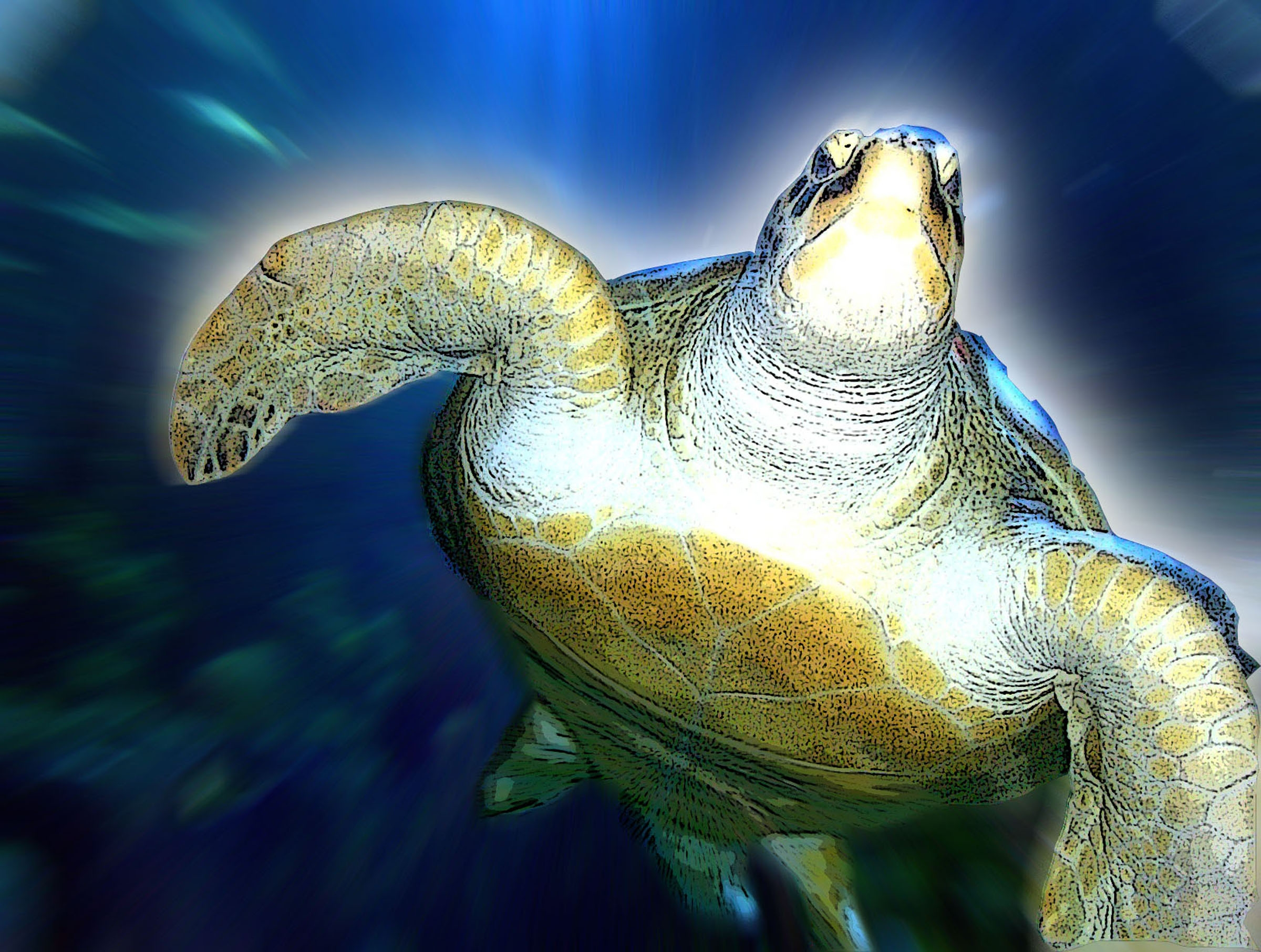 Turtle The Incredible Journey Film Review