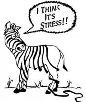 Losing-it-Stress-254x300