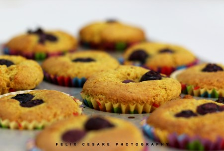 blueberry muffins 1