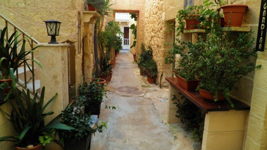 Alley's College Street Rabat, Malta by Robert Finch