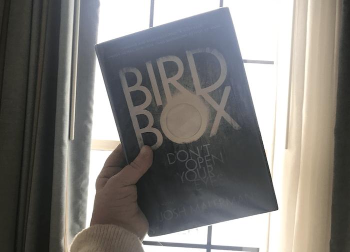 Bird Box book held in front of an open window