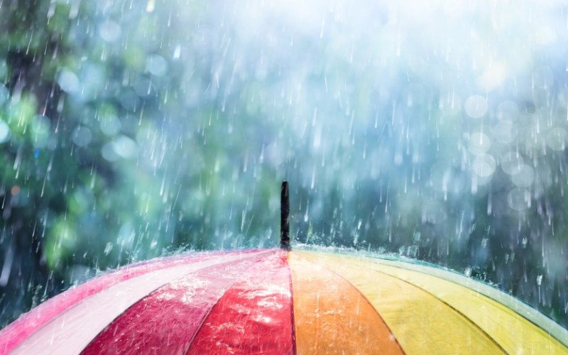 image rain colorful umbrella