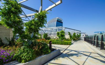 About Green Roofs