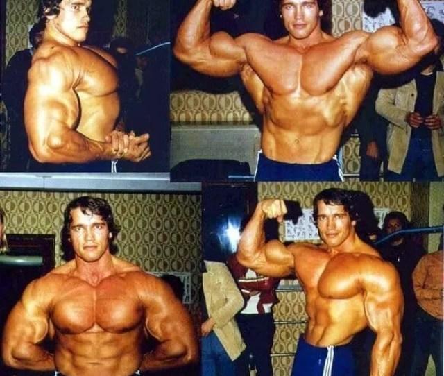 Arnold Schwarzenegger Porn Pic
