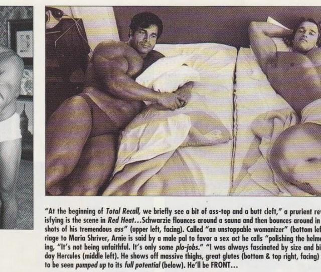 Arnold Schwarzenegger Porno Picture