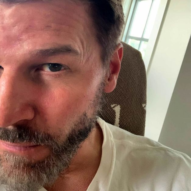 Watch Online    David Boreanaz Nude Scenes & NSFW Clips