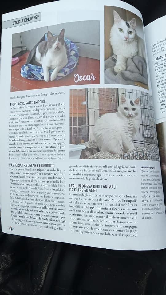 rivista quattrozampe