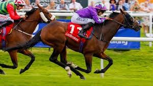 Winning Horse: SAFe