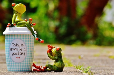 Happiness Coffee Beautiful Day Frog Cup Happy Joy