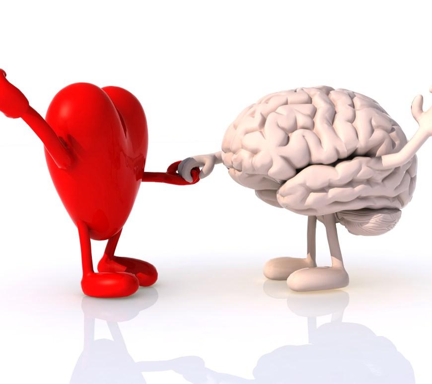 Heart and brain that dance exercise brain spark