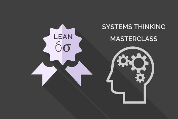 Systems Thinking Training
