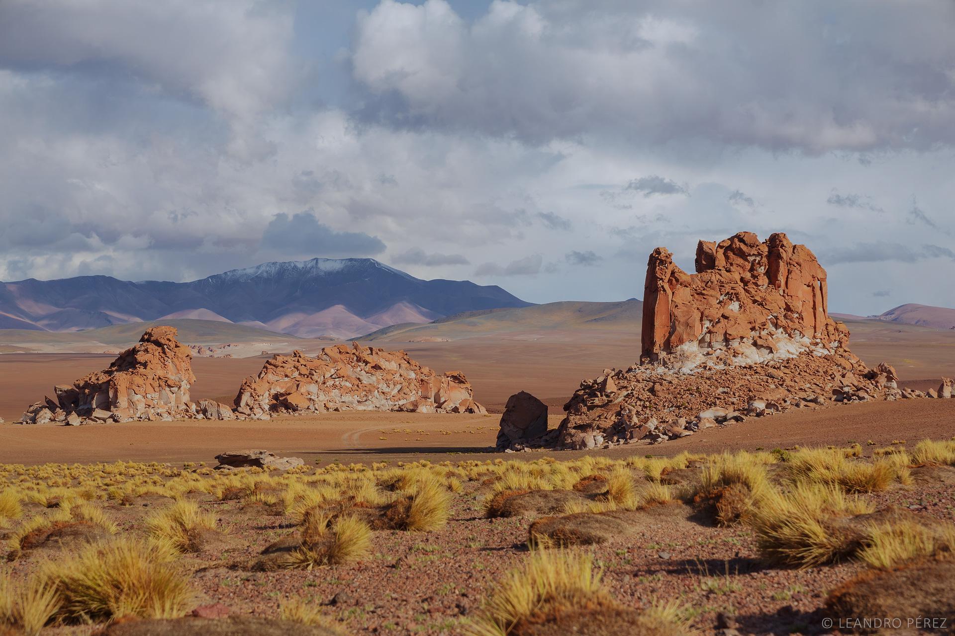 Antofagasta de la Sierra #1