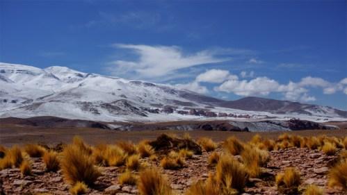 Montañas, vegetación y nubes