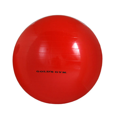 diy-gym-stability-ball-l