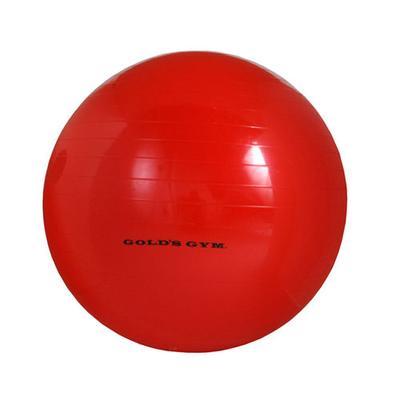 diy-gym-stability-ball-l