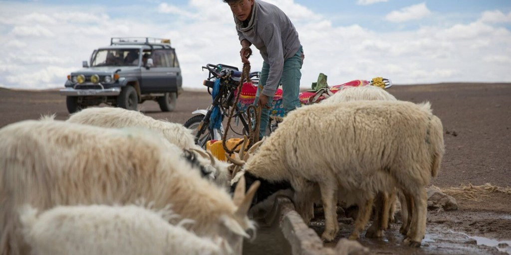 Is there any 'there' there for sustainable luxury initiatives? | Naadam Cashmere