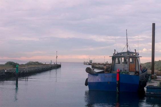 raw-mordialloc-marina-boat-morning
