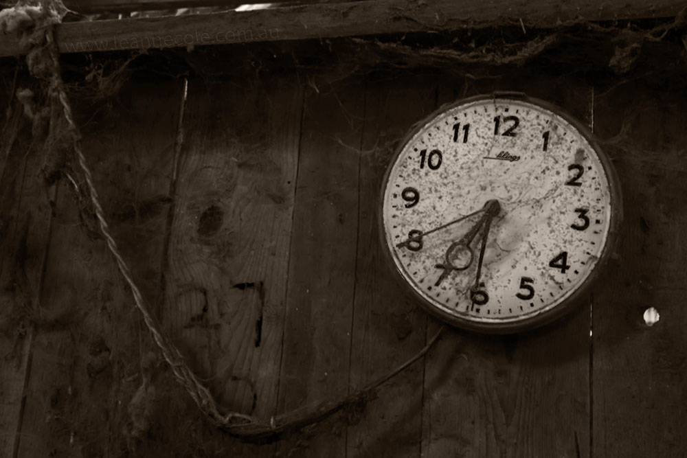 clock-shearing-shed-mallee-time