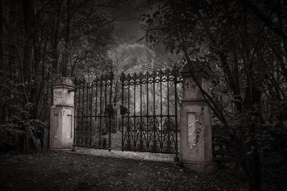 leannecole-gates-6952