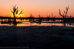 nyahwest-salt-lakes-towanplains-workshop421