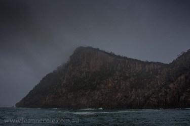 bruny-island-southcoast-cliffs-cruise-4369
