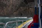 bruny-island-southcoast-cliffs-cruise-4396