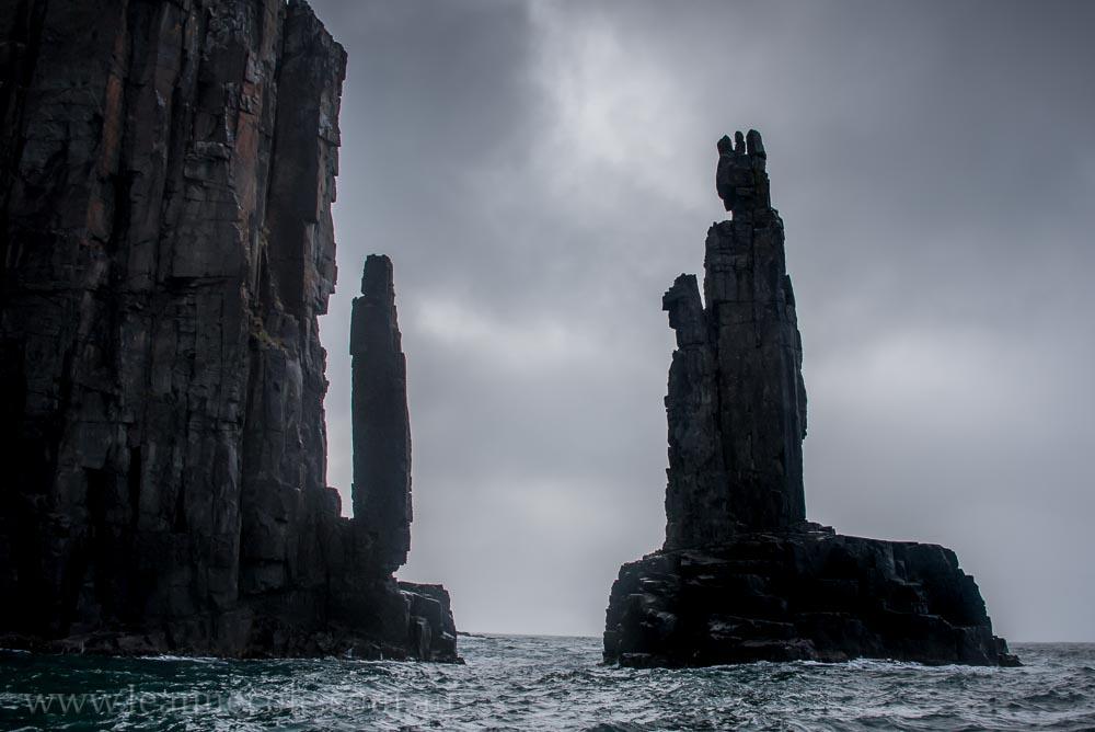 bruny-island-southcoast-cliffs-cruise-4446