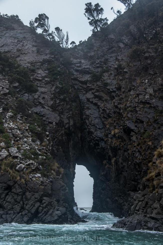 bruny-island-southcoast-cliffs-cruise-4564