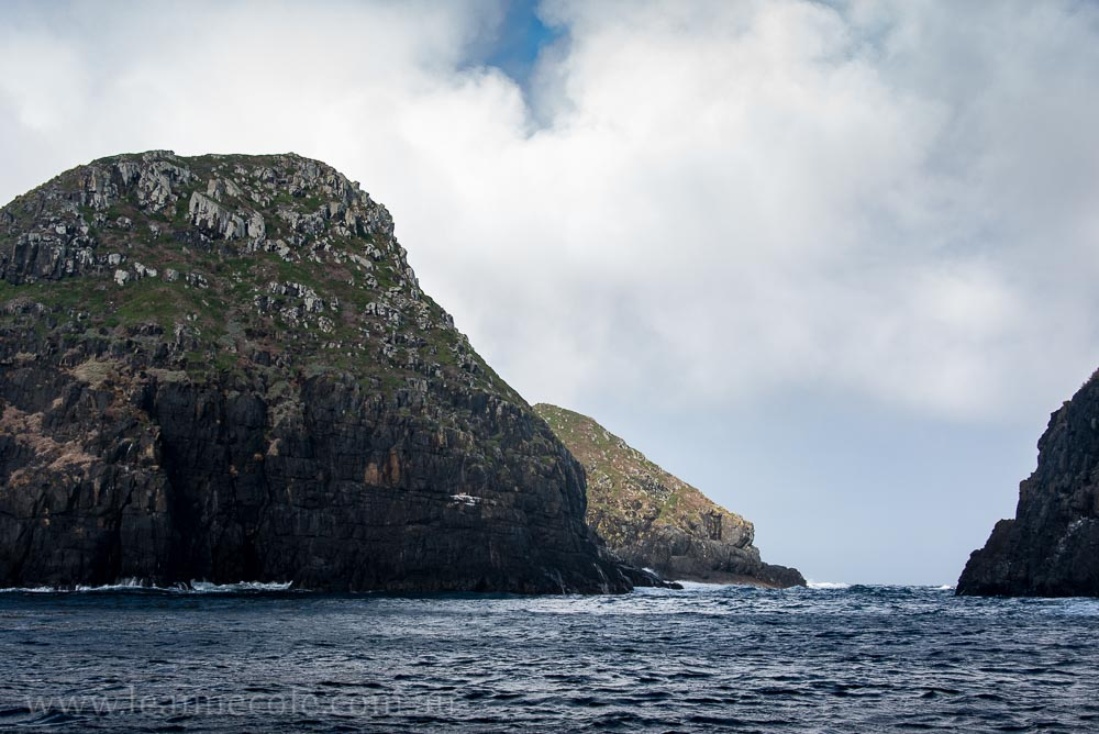 bruny-island-southcoast-cliffs-cruise-4763