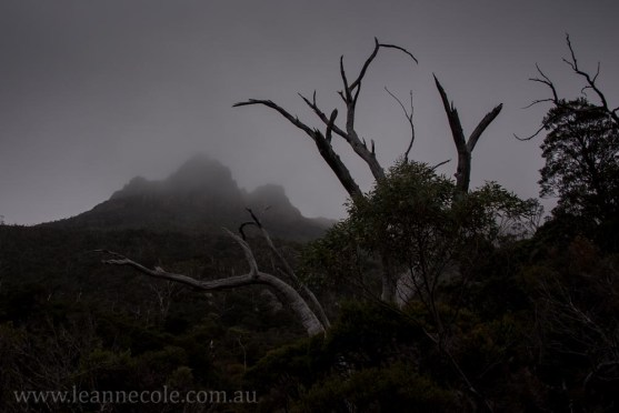 tasmania-mountains-clouds-cradle-dovelake-2168