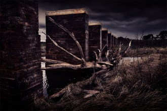 cairncurran-reservoir-railbridge-deadtree-newstead