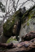 castlemaine-mountain-rocks-bushland-fog-8245