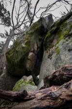 castlemaine-mountain-rocks-bushland-fog-8245